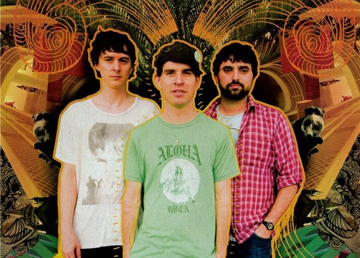 Animal Collective (pic from RVCA)